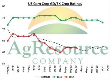 corn 8-28