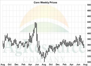 wknd corn 8-18