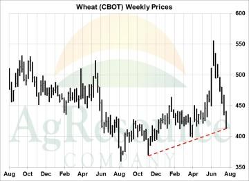 wknd wheat 8-18