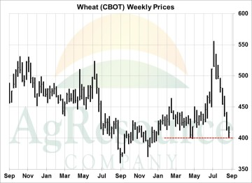 wknd wheat 8-25