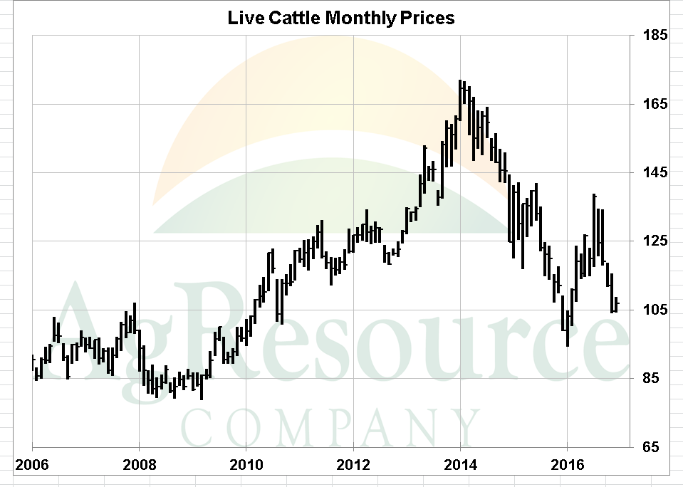 Cattle Traders Await Cash Sales Trend