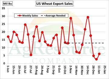 wheat 1-19
