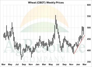 wknd wheat 3-16
